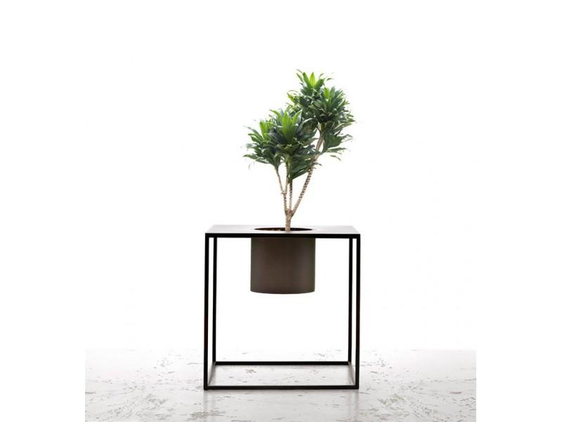 Prix arbuste for Prix entretien jardin