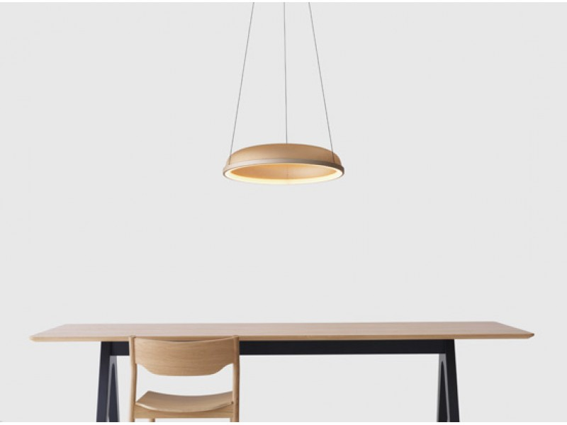 Mesh Space Pendant - Resident Lighting