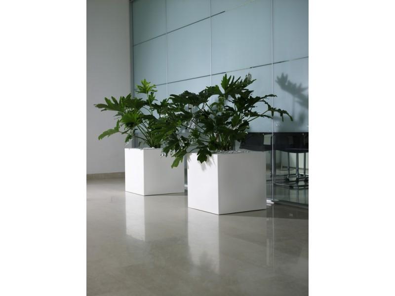 Kube - Khilia Pots and Planters.