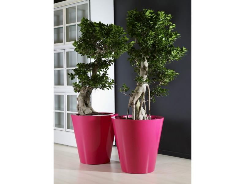 Kuno - Khilia Pots and Planters