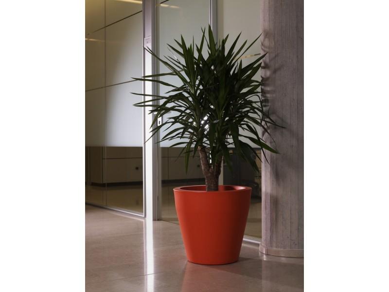 Niscal - Khilia Pots and Planters